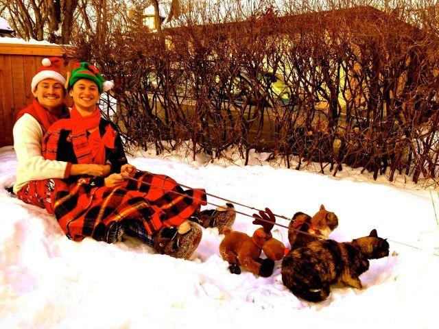 Funny-Christmas-themed-pics11