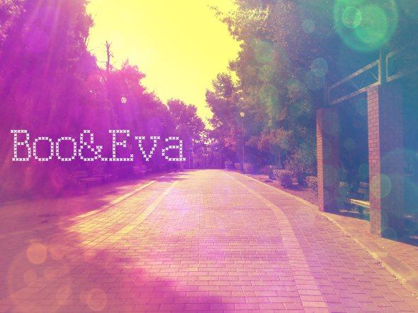 booeva-road