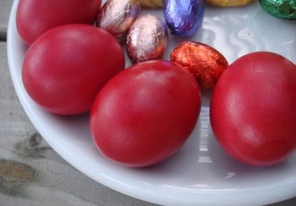 1-EgggsRED_front