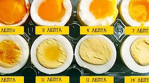 30100-egg_590