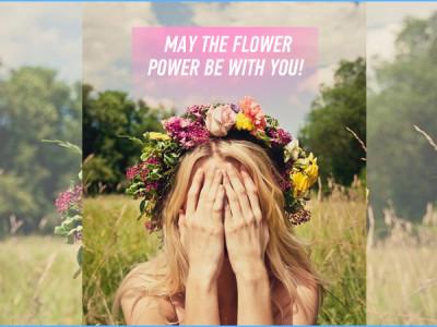 flower2_645_450