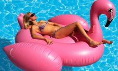 tysinft1000037263_-00_flamingo-float