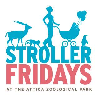 Stroller Fridays